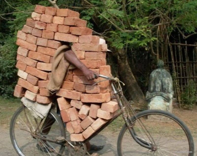 carrying_bricks0-size-800x0